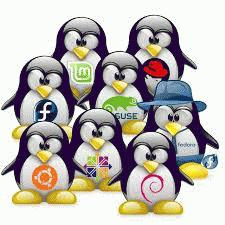 Distribuzioni Linux Italia